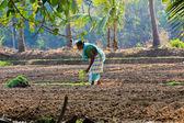 Indian working women — Stock Photo