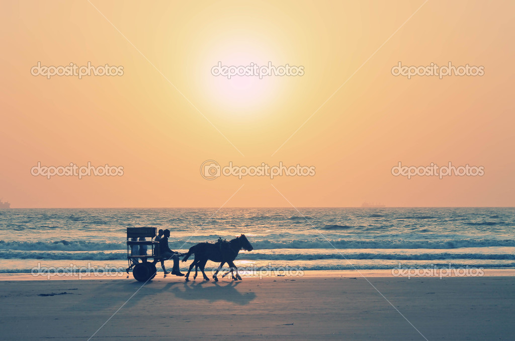 Photo with horse-drawn on the sunset — Stock Photo #11982424