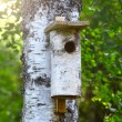 Birdhouse in tree — Stock Photo