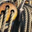 Stock Photo: Close-up of fasten rope