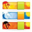 Tropical glossy vector banner set — Stock Vector #11085376