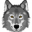 Wolf head — Stock Vector #11062606