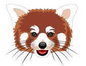 Red panda — Stock Vector