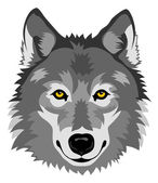 Wolf head — Stock Vector