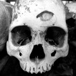 Stockfoto: Skull - Killing Fields of Choeung Ek, Phnom Penh, Cambodia