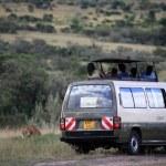Постер, плакат: Safari Van Maasai Mara Reserve Kenya