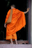 Buddhist Monks - Wat Phnom, Phnom Penh, Cambodia — Stock Photo