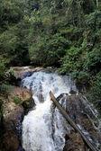 Waterfall in Jungle, Malaysia — Stock Photo