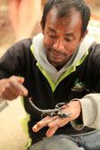 Man Holding Black Scorpion — Stock Photo