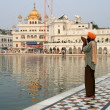 Sikh MPraying at Golden Temple — Stock Photo #11656993