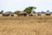 Mud Hut Village - Tarangire National Park. Tanzania, Africa — Stock Photo