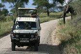 Safari - Tarangire National Park. Tanzania, Africa — Stock Photo