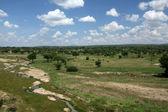 Safari Landscape. Tanzania, Africa — Stock Photo