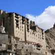 Leh Palace, Leh, India — Photo