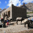 Stock Photo: Setting off on Trek, India
