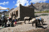 Setting off on a Trek, India — Stock Photo