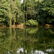 Stock Photo: Tropical Lake - Eden Gardens, Kolkata, India
