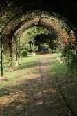 Eden Gardens, Kolkata, India — Stock Photo