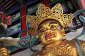 Chinese God - Kek Lok Si Temple — Stockfoto