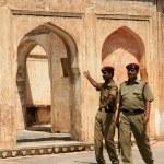 Amber Fort, Jaipur, India — Stock Photo #11885353