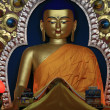 Buddha Statue at Home Of Dalai Lama), India — ストック写真
