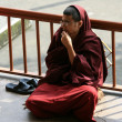 Monks Debating at Home Of Dalai Lama, India — ストック写真