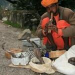 Snake Charming, India — Stock Photo #11887177