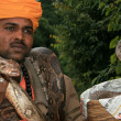 Snake Charming, India - Stock Photo