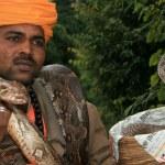 Snake Charming, India — Stock Photo #11887195