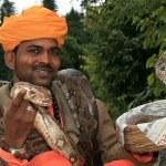 Snake Charming, India — Stock Photo #11887198