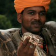 Snake Charming, India — Stock fotografie