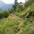 Hiking in Vashisht, India — Stock Photo #11887560