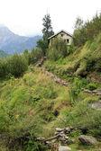 Hiking in Vashisht, India — Stockfoto