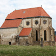 Scene from a side of cistercian church from Carta village — Stockfoto