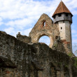 Bell tower of cistercian church from Carta, Romania — Stockfoto