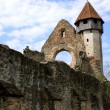 Bell tower of cistercian church from Carta, Romania — 图库照片