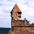 Preserved ruins of bells tower from Carta, Romania — Stock Photo