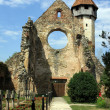 Cistercian church in Carta village from Romania — Stock Photo #11868782