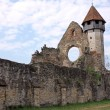 Preserved ruins of cistercian church from Transylvania — Stock Photo