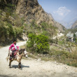 Nepalese villager on horse in Himalaya mountains - Foto Stock