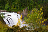 Snoqualmie falls — Photo