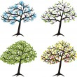 Season tree for winter, spring, summer, autumn — Stock Vector