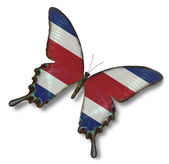 Costa Rica flag on butterfly — Stock Photo