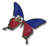 Haiti flag on butterfly — Stock Photo