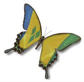 São vicente e granadinas-bandeira em borboleta — Foto Stock