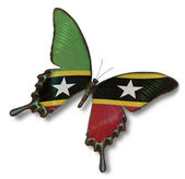 Federation of Saint Kitts and Nevis flag on butterfly — Stock Photo