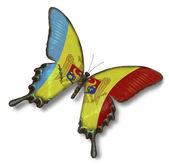 Moldova flag on butterfly — Stock Photo