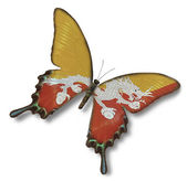 Butane flag on butterfly — Stock Photo