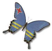 Aruba flag on butterfly — Stock Photo