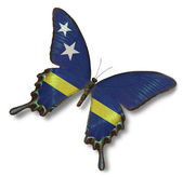 Curacao flag on butterfly — Stock Photo
